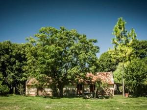 campotinto - paisaje con casa