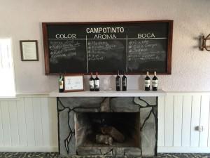 campotinto - vino - pizarra